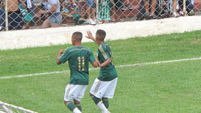 Palmeirenses comemoram o gol da vitória contra o Santos (Foto: Rodrigo Faber)