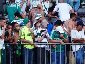 Torcida do Palmeiras no jogo entre Palmeiras e Botafogo, em 2012 (Foto: Marcos Ribolli / Globoesporte.com)