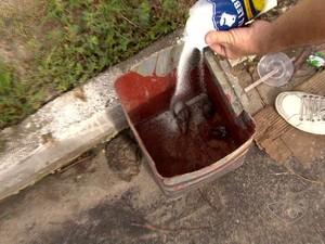 É necessário coletar o animal jogar sal para desidrata-lo (Foto: Reproduçao/ TV Gazeta)