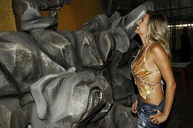 Luisa Mell confere fantasias da Águia de Ouro (Foto: Celso Tavares/EGO)