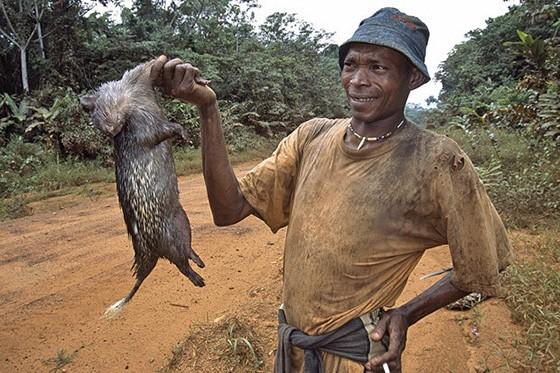 Um roedor morto é oferecido aos motoristas que transitam pelas estradas da região de Rio Muni, a parte continental da Guiné Equatorial (Foto: Haroldo Castro/ÉPOCA)