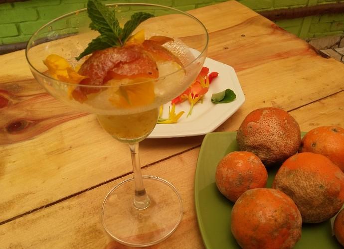 Confira o passo a passo e aprenda a fazer a granita de limão cravo (Foto: Reprodução/ Rio Sul Revista)