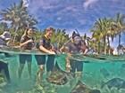 Wesley Safadão leva família para nadar com arraias em Orlando