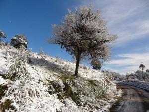 Vidal Ramos ficou coberta pela neve (Foto: Kênia Elis Kuhnen/Arquivo Pessoal)
