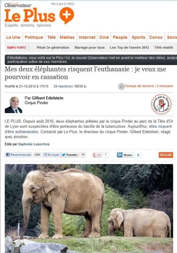 Os elefantes Baby e Nepal (Foto: Reprodução)