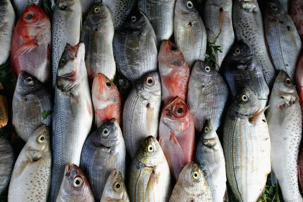 Peixe no mercado: consistência indica frescor (Foto: Getty Images/ Chris Jackson)
