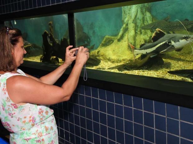 Visitantes podem enviar fotos antigas no Aquário de Santos (Foto: Divulgação / Prefeitura de Santos)