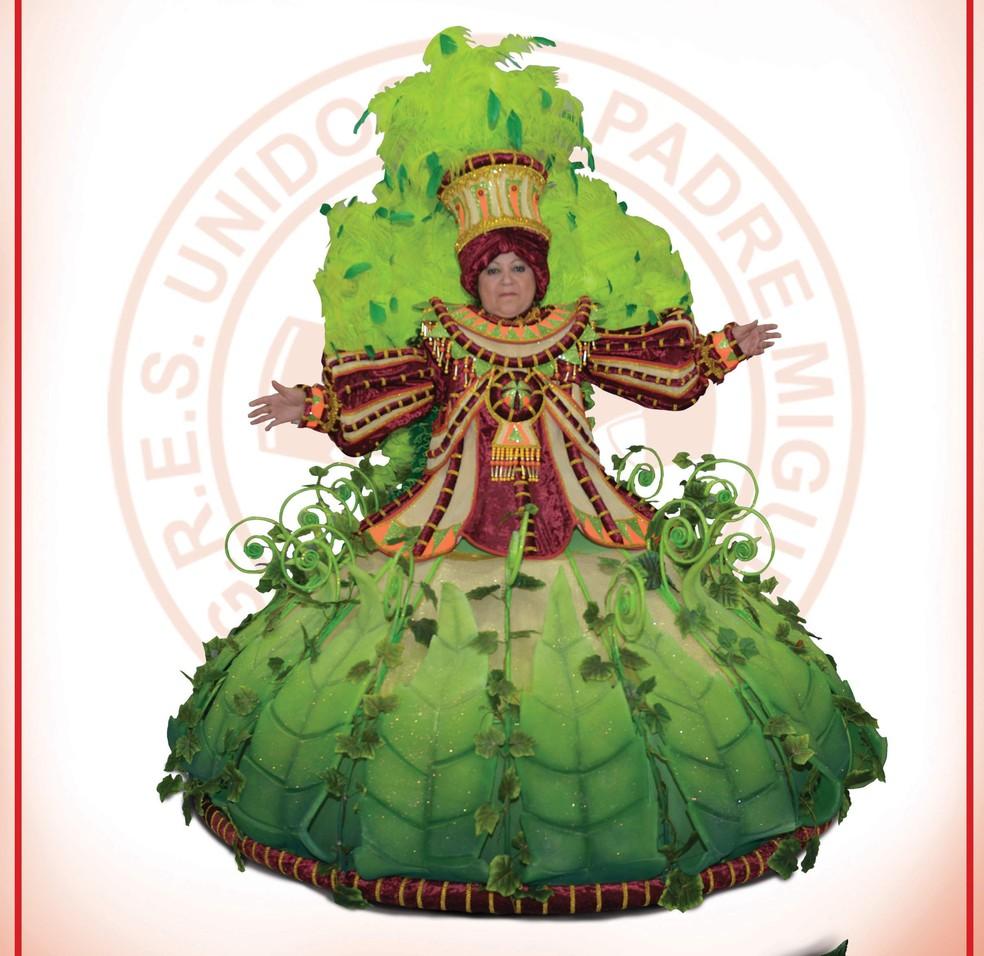 Unidos de Padre Miguel cortou festa de apresentação de protótipos. Fantasias podem ser vistas no Facebook da escola (Foto: Reprodução/ Facebook Unidos de Padre Miguel)