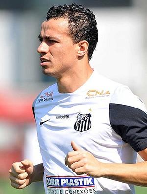 Leandro Damião, atacante do Santos