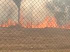 Incêndio atinge área de vegetação no Parque da Cidade em Santarém