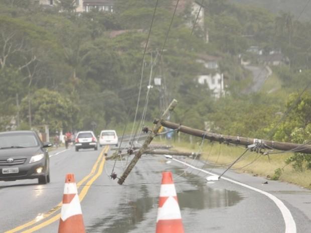 Ventos fortes derrubaram árvores e postes em Florianópolis (Foto: James Tavares/Secom)