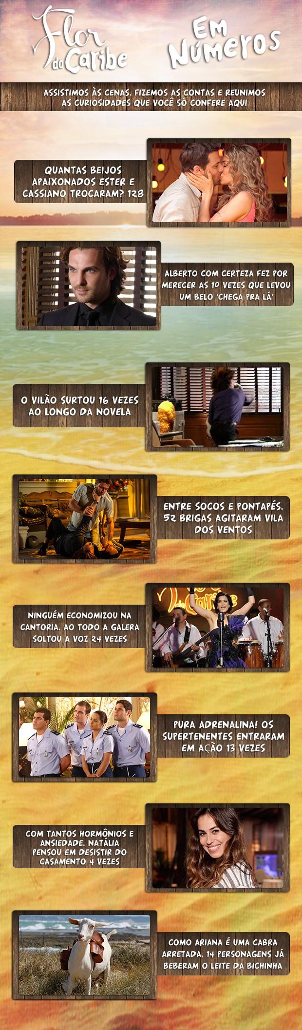 Flor do Caribe em números (Foto: Flor do Caribe/TV Globo)