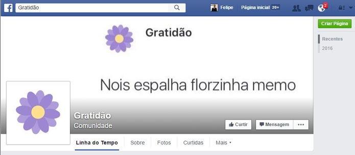 Página em homenagem à florzinha do Facebook (Foto: Felipe Alencar/TechTudo)