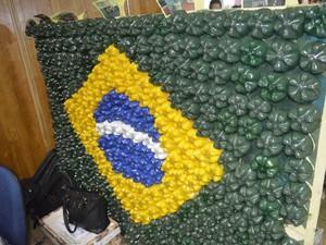 Bandeira do Brasil feita a partir de garrafas pet (Foto: John Pacheco/G1)
