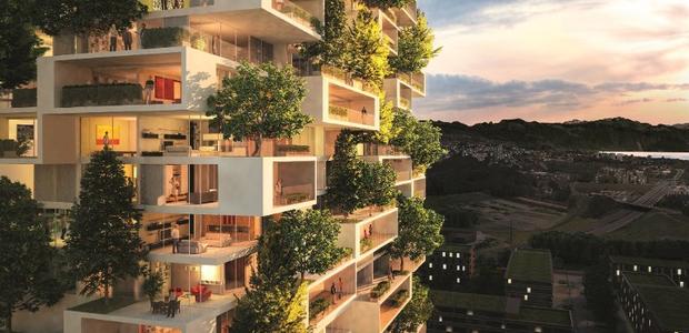 A floresta urbana contará com 40 mil árvores e mais de um milhão de de plantas (Foto: Divulgação)