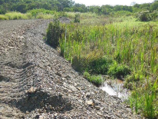 Obra de terraplanagem já aterrou 50% de nascente em Piracicaba (Foto: Roberto Braga)