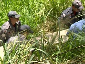 Resgate corpo Matheus Goldoni Juiz de Fora (Foto: Reprodução/ TV Integração)