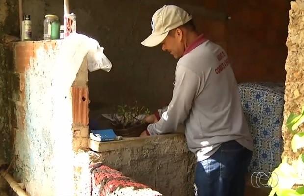 Vistoria encontrou focos do mosquito na vizinhança de gestante, em Santo Antônio do Descoberto, em Goiás (Foto: Reprodução/TV Anhanguera)