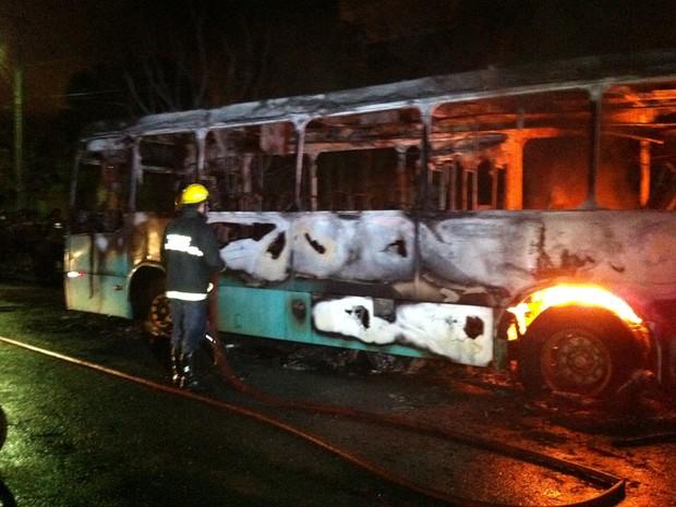 Chamas se espalharam rapidamente e ônibus ficou destruído. (Foto: Valdivan Veloso/G1)