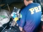 No TO, polícia apreende 225 kg de agrotóxicos escondidos em caminhão