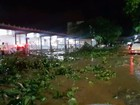 Temporal com granizo deixa estragos nas ruas de Colatina, ES