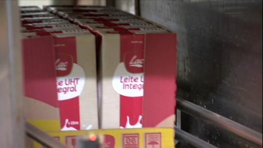 Preço médio do leite cai 20% entre agosto e novembro em todo o país