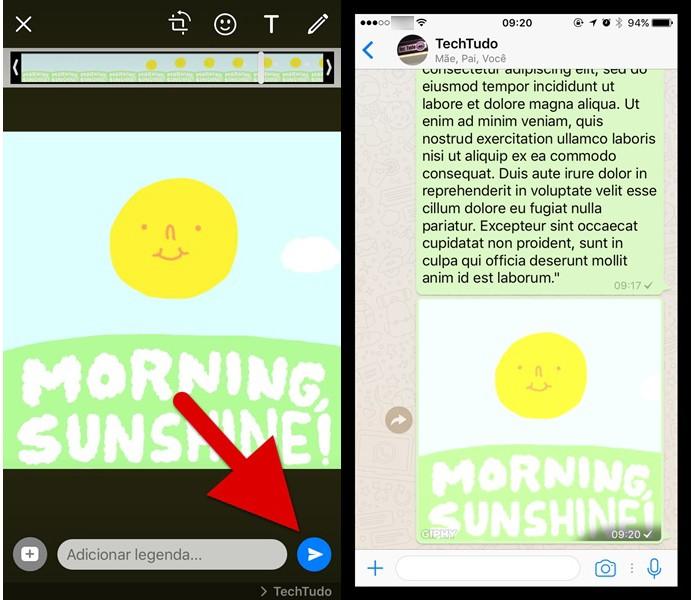 Enviando o GIF pesquisado para a sua conversa no WhatsApp (Foto: Reprodução/Helito Bijora)