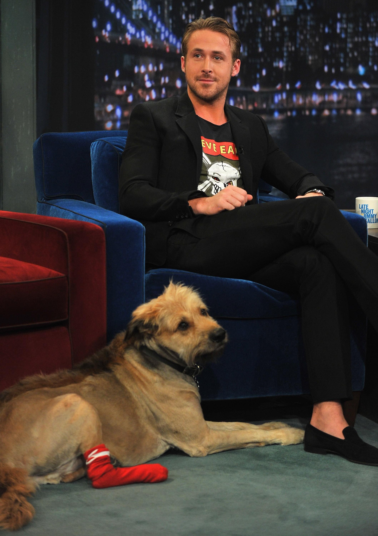 Ryan Gosling (Foto: Getty Images)