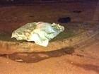 Jovem é morto a golpes de terçado e tem mão decepada em Guajará, RO