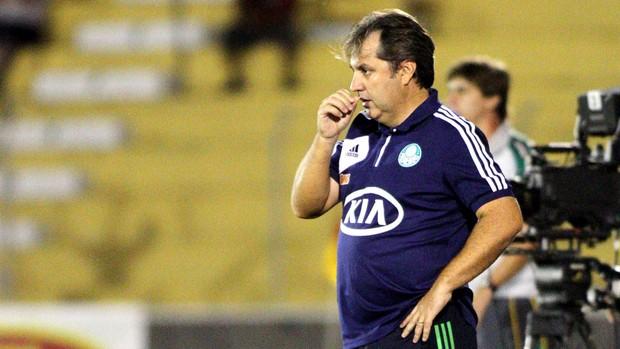 Gilson Kleina jogo Palmeiras Mirassol derrota (Foto: José Luis Silva / Agência Estado)