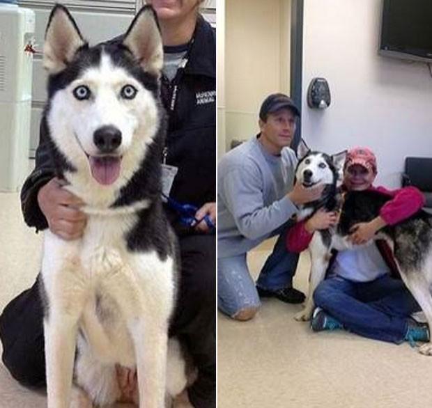 Heather Jackson reencontrou após quase 5 anos sua cadela de estimação chamada 'Shakira'. (Foto: Divulgação/McHenry County)