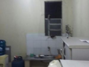 Na imagem, ratos sobem por parede próxima à pia da cozinha (Foto: Sindepol/Divulgação)