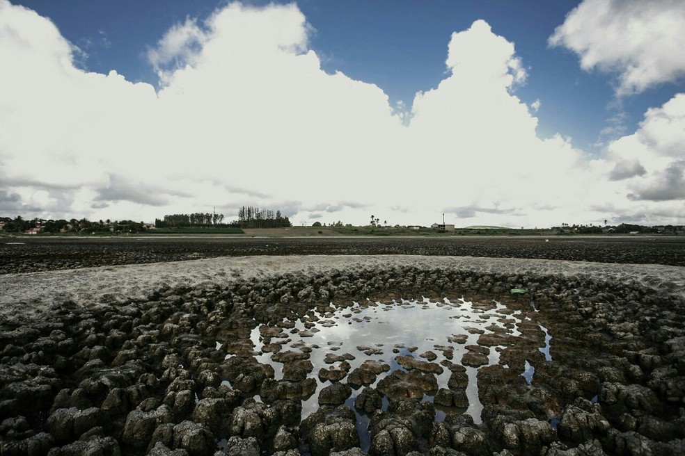 Pouca chuva se reflete nos açudes secos no Ceará (Foto: Jonathan Lins/AL)