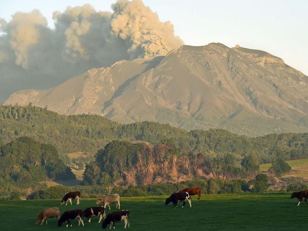 Vista do vulcão Calbuco de Porto Varas, no Chile, na última sexta-feira (24). Vulcão continua expelindo cinzas neste sábado (25) (Foto: Martin Bernetti/AFP)