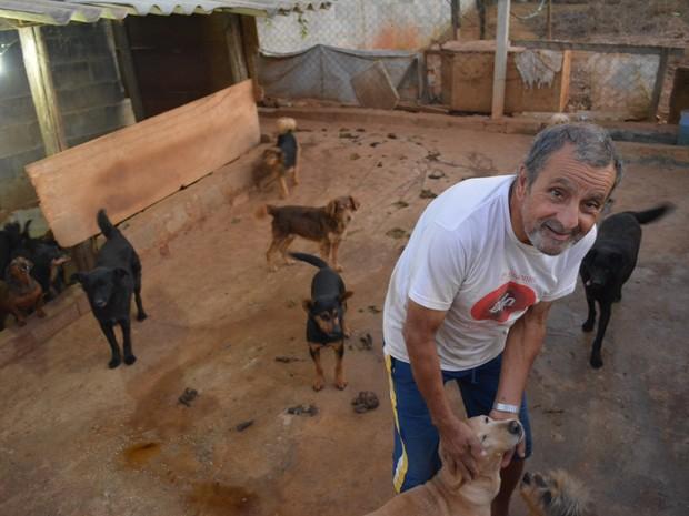 Antonio de Barros não pode entrar em um canil, em Mogi das Cruzes, que todos os cachorros querem brincar (Foto: Jamile Santana/ G1)