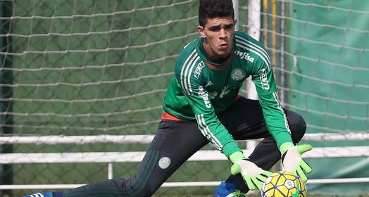 renovou (Cesar Greco / Ag. Palmeiras / Divulgação)