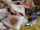 Mais de 300 kg de pescado irregular são apreendidos em Mato Grosso