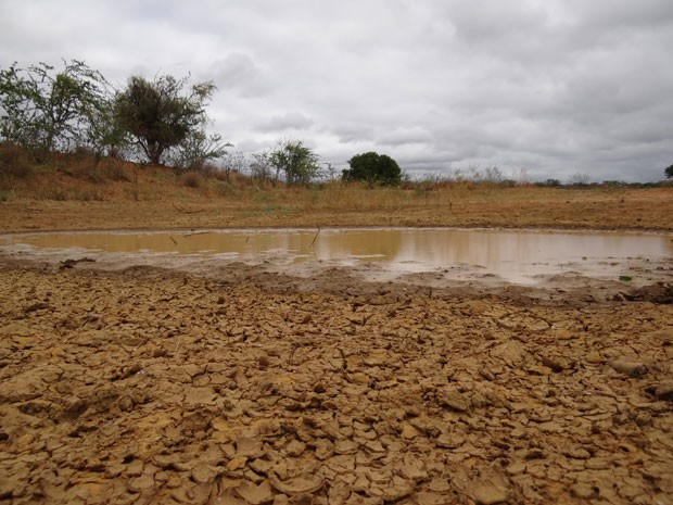 Seca em Lagoa Grande, em Pernambuco (Foto: Henrique Zuba/ TV Globo)