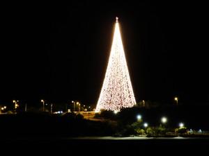 Árvore luminosa da Energisa tem 30 mil lâmpadas e pode ser vista de vários pontos da cidade (Foto: Maurício Melo/G1)