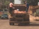 Garis coletam restos de animais sem equipamentos de proteção; veja vídeo