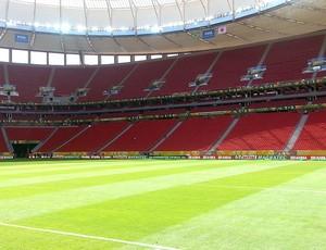gramado estádio Mané Garrincha jogo (Foto: Richard Souza)
