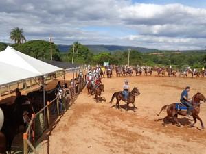 team penning grande final (Foto: Divulgação)