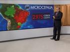 Casos de microcefalia ligados à zika crescem 7% na última semana