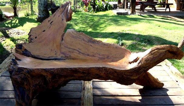 Agricultor recolhe troncos de árvores para transformar tudo em arte (Foto: Reprodução/EPTV)