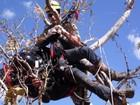 Homem morre após cair de parapente em reserva ambiental de Goiás
