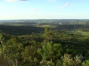 Flona de Ipanema é área de conservação federal desde 1992 (Foto: Reprodução/TV TEM)