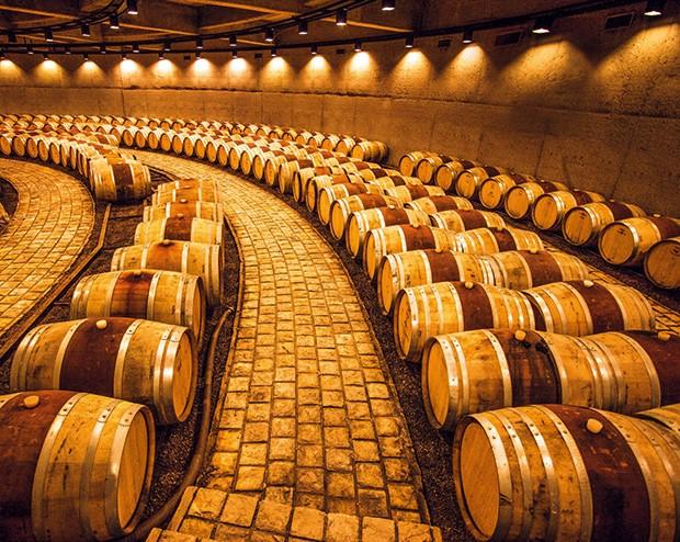 Empresa;Ciência;Vinho;adega de Allegro (Foto: Nicholas Tinelli/Alamy Stock Photo)