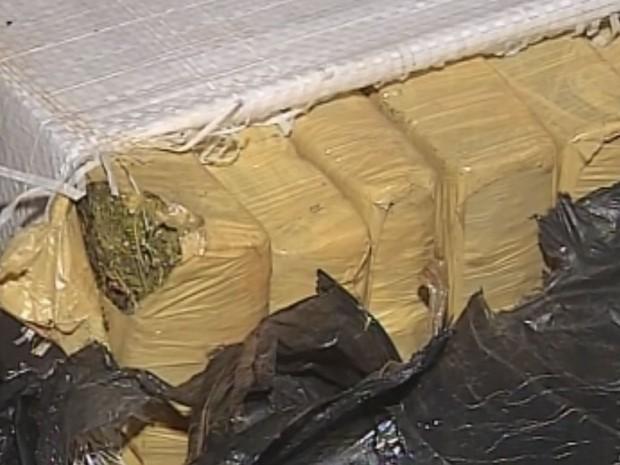 Quase meia tonelada de maconha estava no carro (Foto: Reprodução / TV TEM)