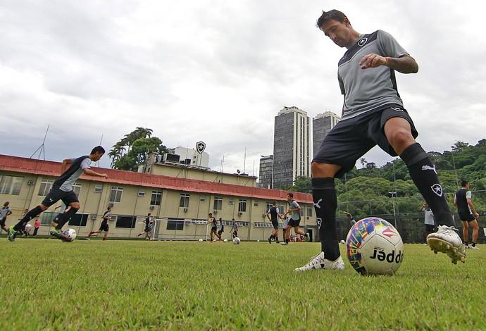 Salgueiro Botafogo (Foto: Vitor Silva / SSpress / Botafogo)