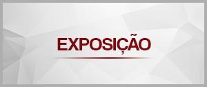 Layout Exposição (Foto: Arte/ Sebastião Mota/G1)